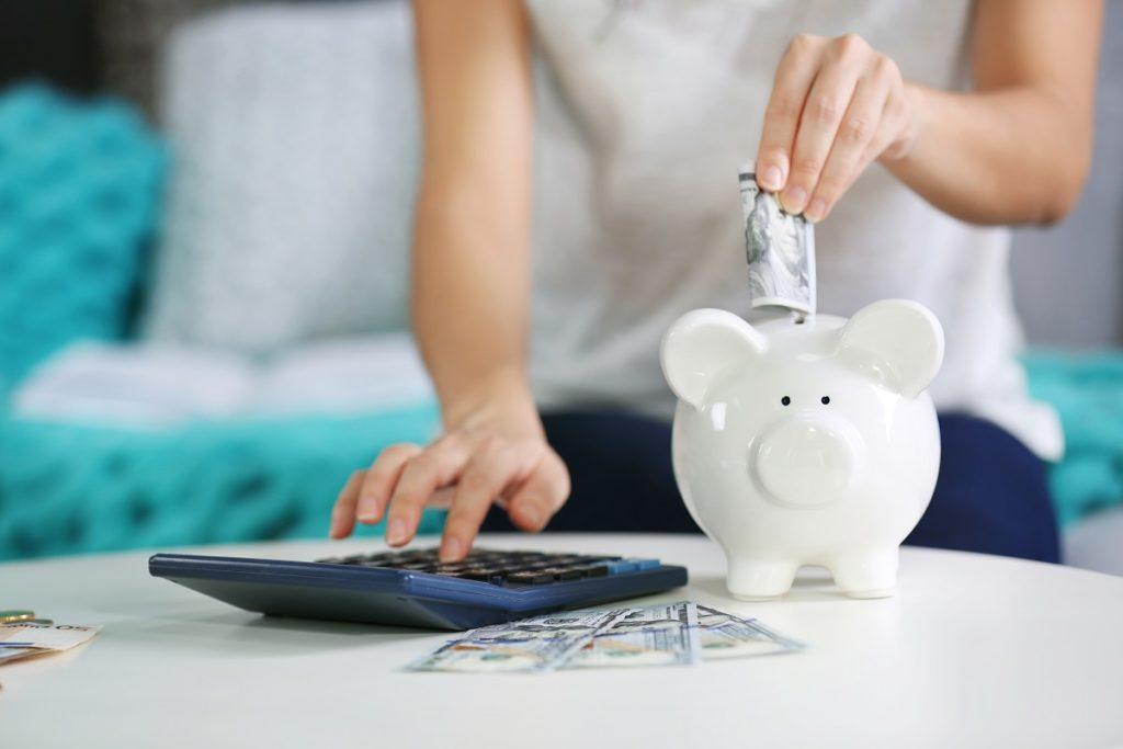 savings on a piggy bank